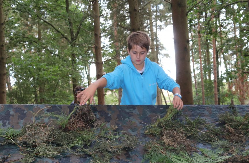 2 boys pulling off moss and foliage to build a tent