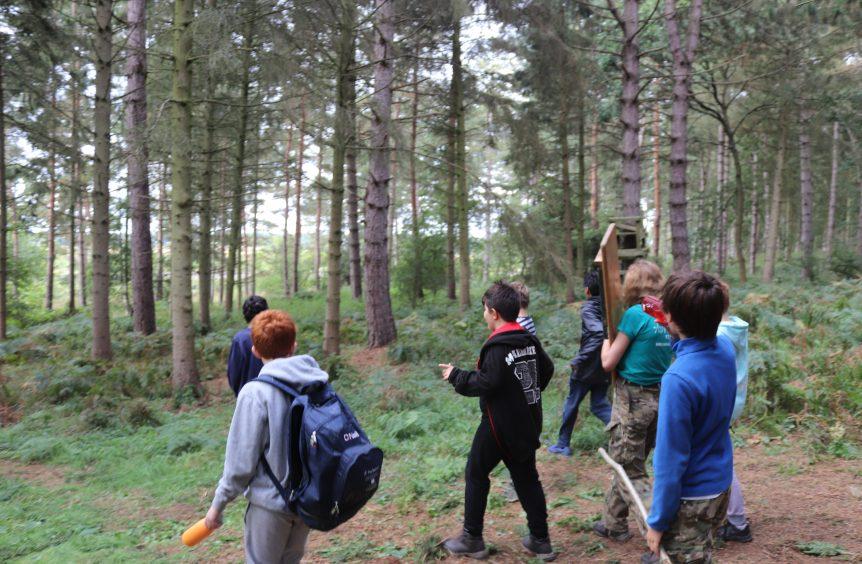 Children walking through the forest