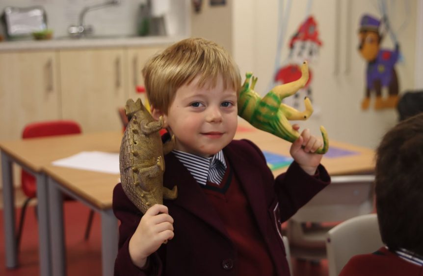 A boy holding dinosaurs to play with